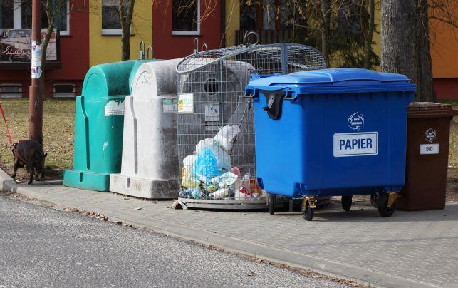 W Bełchatowie opłaty za śmieci idą ostro w górę. Zapłacimy nawet kilkaset złotych więcej - Zdjęcie główne
