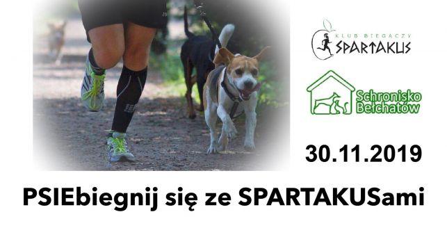 PSIEbiegnij się ze Spartakusami, czyli niecodzienny bieg w Bełchatowie - Zdjęcie główne