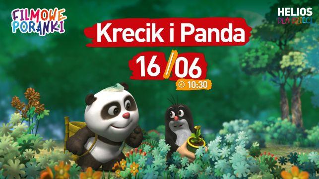 Filmowe Poranki: Krecik i Panda, cz. 1 - Zdjęcie główne