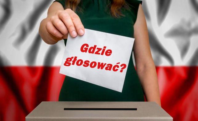 Gdzie głosować? Znajdź swój lokal wyborczy! - Zdjęcie główne