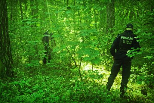 Uciekał lasem przed mundurowymi. W trakcie pościgu użyto... kamery noktowizyjnej - Zdjęcie główne