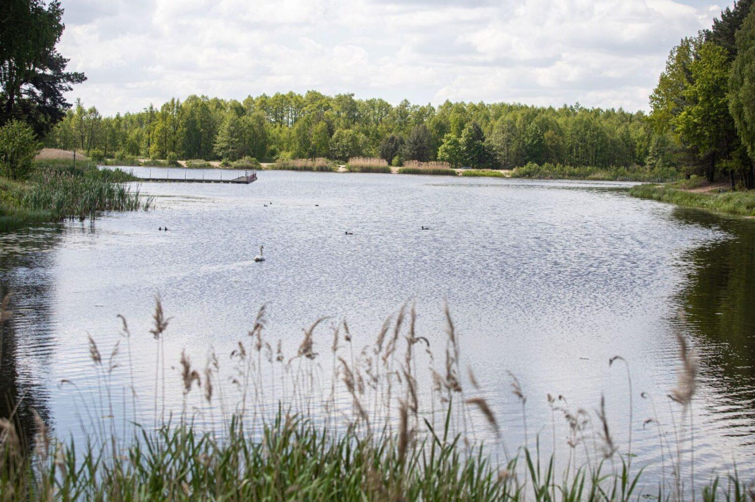 Otwierają kolejne kąpielisko koło Bełchatowa. W upalne dni nie jesteśmy skazani tylko na Wawrzkowiznę... - Zdjęcie główne