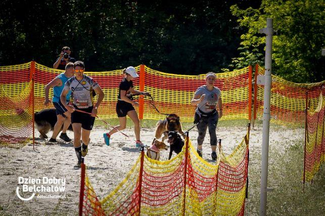 Ekstremalnie na Górze Kamieńsk. Setki czworonogów i ich właścicieli walczyło w Hard Dog Race  [MEGA GALERIA] - Zdjęcie główne