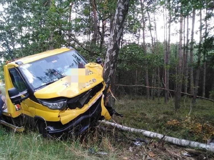 Groźnie na drodze krajowej 74 koło Ruśca. Iveco roztrzaskało się na drzewie [FOTO] - Zdjęcie główne