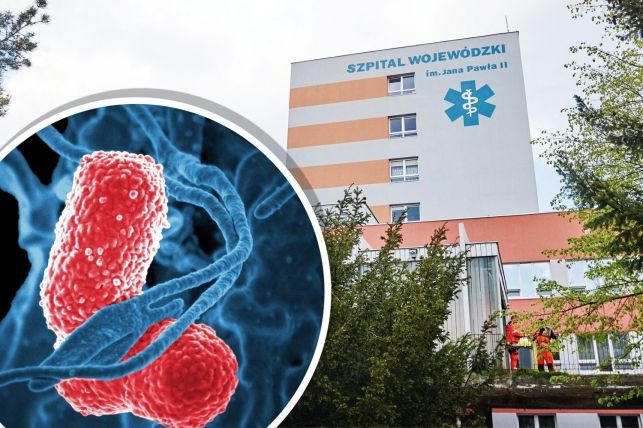 """""""Super-bakteria"""" w Bełchatowie! Szpital zamyka oddział dla odwiedzających  - Zdjęcie główne"""