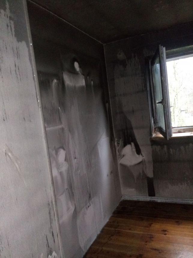 Pożar domu w Helenowie. Rodzinę uratowały świnki morskie. Przyjaciółka organizuje zbiórkę [FOTO] - Zdjęcie główne