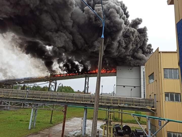 Pożar na terenie Elektrowni Bełchatów. 12 zastępów straży walczy z ogniem [FOTO][VIDEO] - Zdjęcie główne