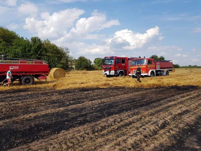 Pożar w Pożdżenicach. Trzy zastępy straży walczyły z ogniem [FOTO] - Zdjęcie główne