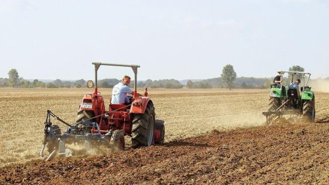 Szczyt prac polowych. Dziewiętnaście wypadków rolniczych na terenie powiatu bełchatowskiego - Zdjęcie główne