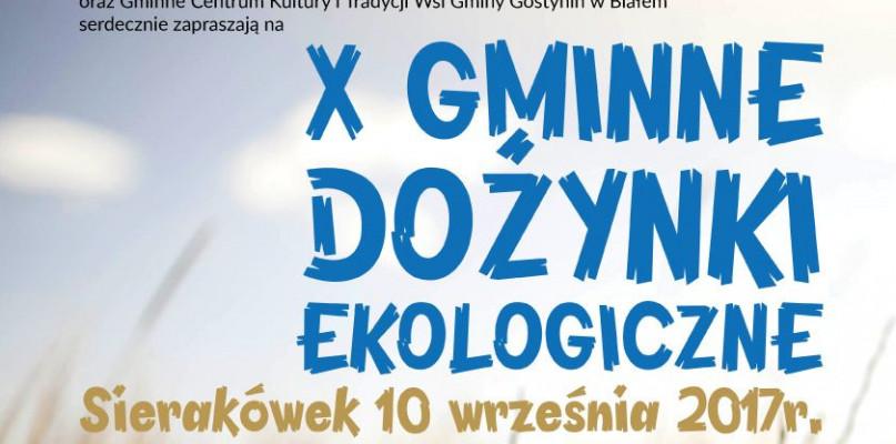 Zbliżają się Gminne Dożynki Ekologiczne w Sierakówku - Zdjęcie główne