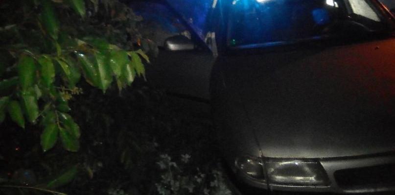 Pijany kierowca na oczach policji zakończył jazdę w rowie - Zdjęcie główne