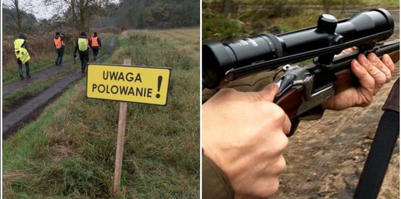 """Zbliża się """"rzeź dzików"""". Ile sztuk odstrzelą w naszym powiecie? - Zdjęcie główne"""