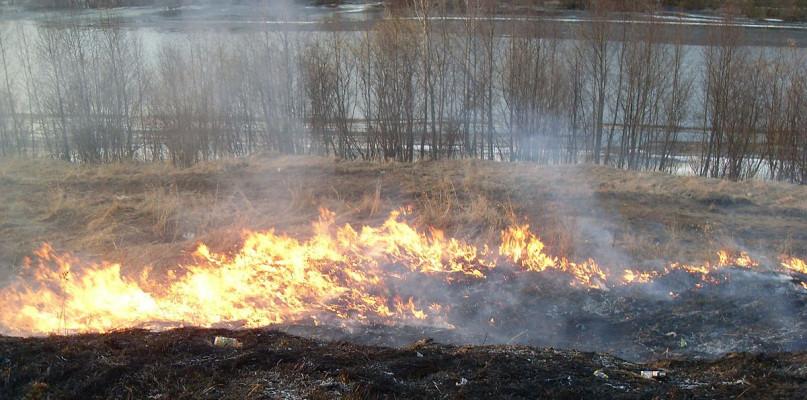 Policja przypomina - wypalanie traw jest niedozwolone! - Zdjęcie główne
