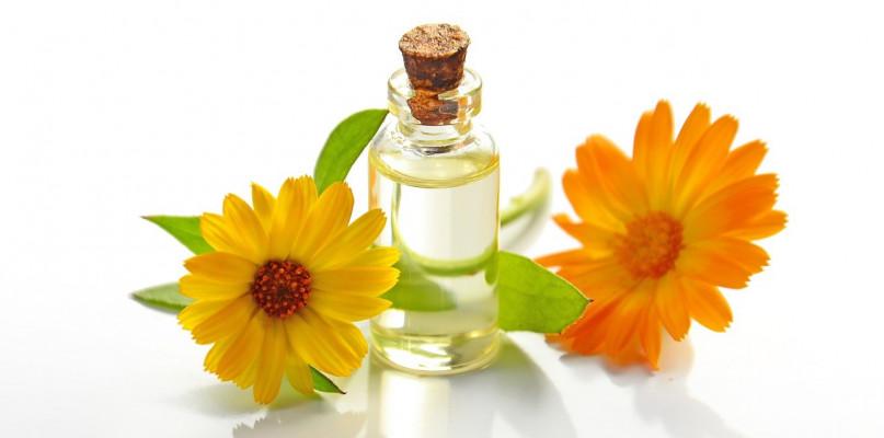 Czym cechują się kosmetyki organiczne? - Zdjęcie główne