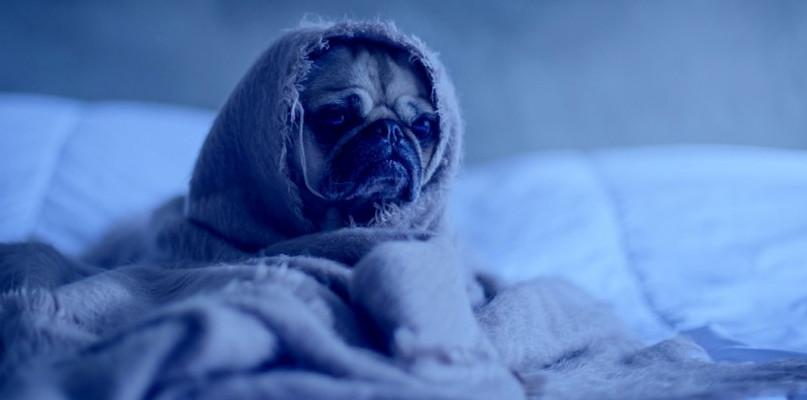 """Dzisiaj Blue Monday, czyli """"najbardziej depresyjny dzień w roku"""" - Zdjęcie główne"""