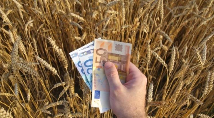 Będzie kolejne dofinansowanie dla rolników. Trwa nabór wniosków, do zganięcia kilkaset tys. euro - Zdjęcie główne
