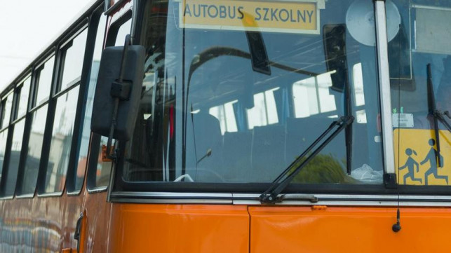 Jutro początek roku szkolnego. Sprawdź rozkład jazdy autobusów szkolnych w gminie Krośniewice - Zdjęcie główne