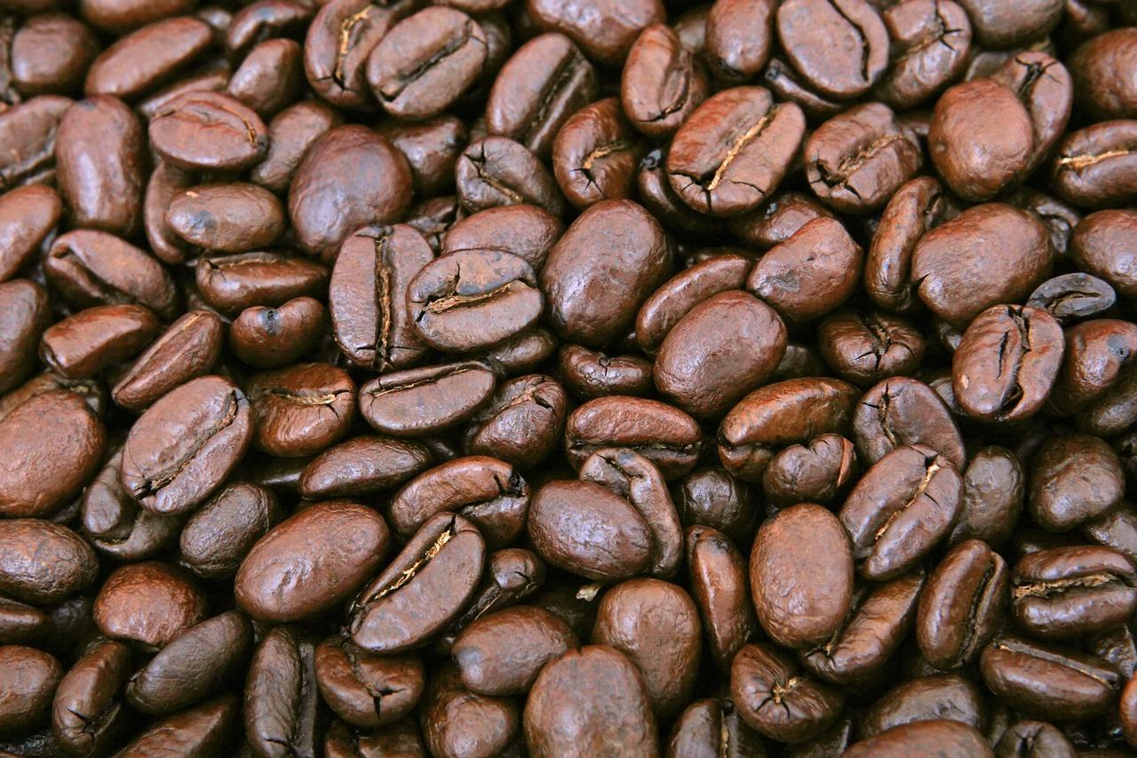 Jakie są gatunki kawy? Czym się charakteryzują? - Zdjęcie główne