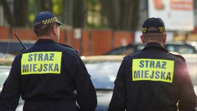 Nowe uprawnienia strażników miejskich stały się faktem. Za co mogą wystawić mandat? - Zdjęcie główne