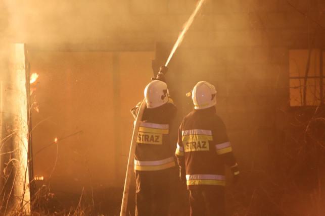Nocny pożar domu. Ponad 20 strażaków w akcji - Zdjęcie główne