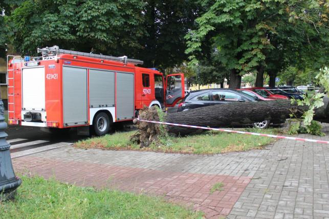 [FOTO] Kilkadziesiąt interwencji straży. Uszkodzony dach, połamane drzewa, zerwane linie energetyczne - Zdjęcie główne