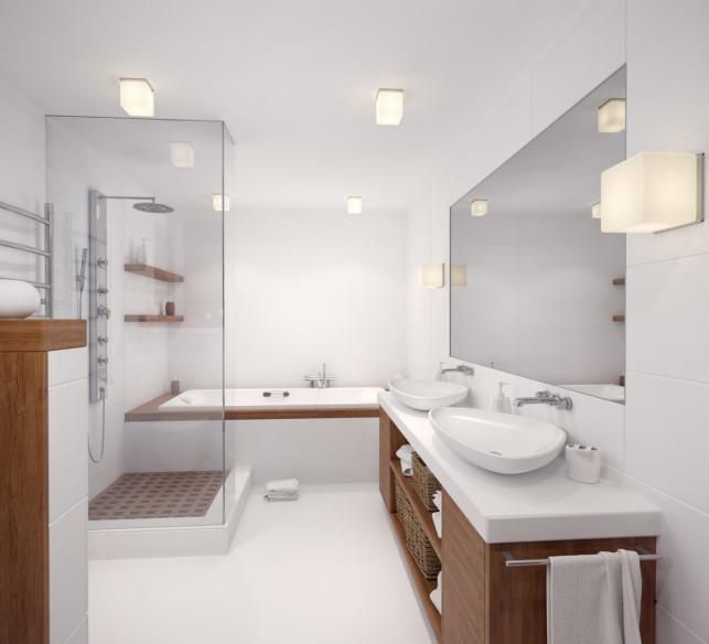 Aranżacja łazienki. Jakie decyzje trzeba podjąć, projektując pomieszczenie? - Zdjęcie główne