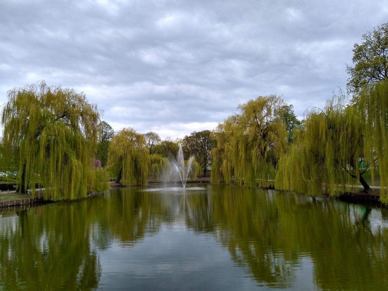 Wiosna w Kutnie w obiektywie. Jak wyglądają parki i ulice? [ZDJĘCIA] - Zdjęcie główne