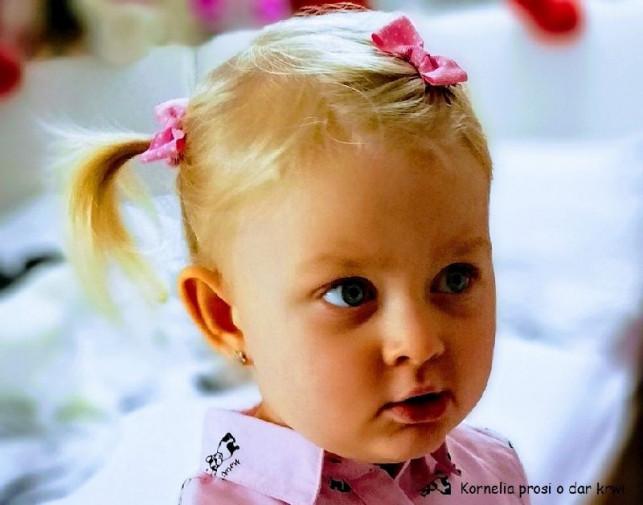 Mała Kornelka jest poważnie chora. Każdy może jej pomóc! - Zdjęcie główne