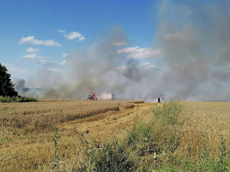 Duży pożar w okolicach Kutna. Na miejscu kilka zastępów straży pożarnej [ZDJĘCIA] - Zdjęcie główne