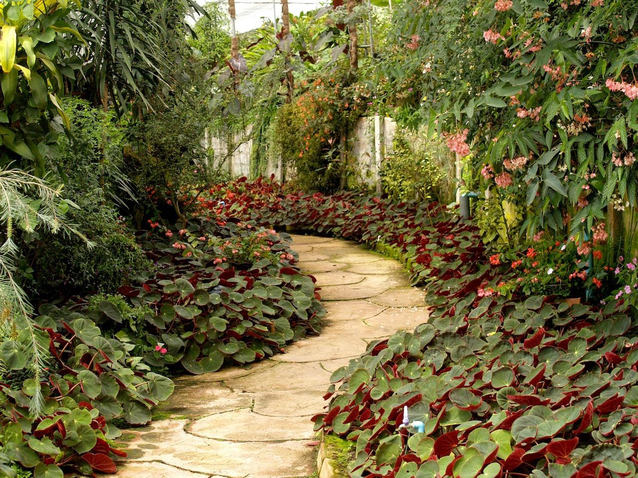 Wybieramy sklep ogrodniczy – na co zwrócić uwagę? - Zdjęcie główne