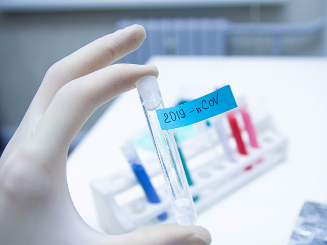 Koronawirus: prawie 80 nowych zakażeń w Kutnie i okolicach - Zdjęcie główne