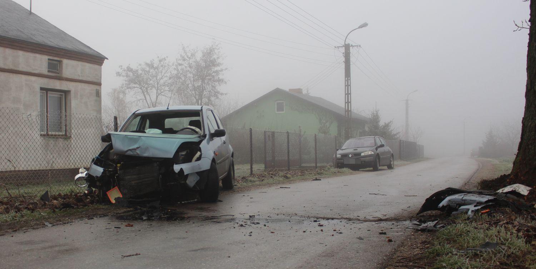 [FOTO] Samochód uderzył w drzewo, potem w ogrodzenie - Zdjęcie główne