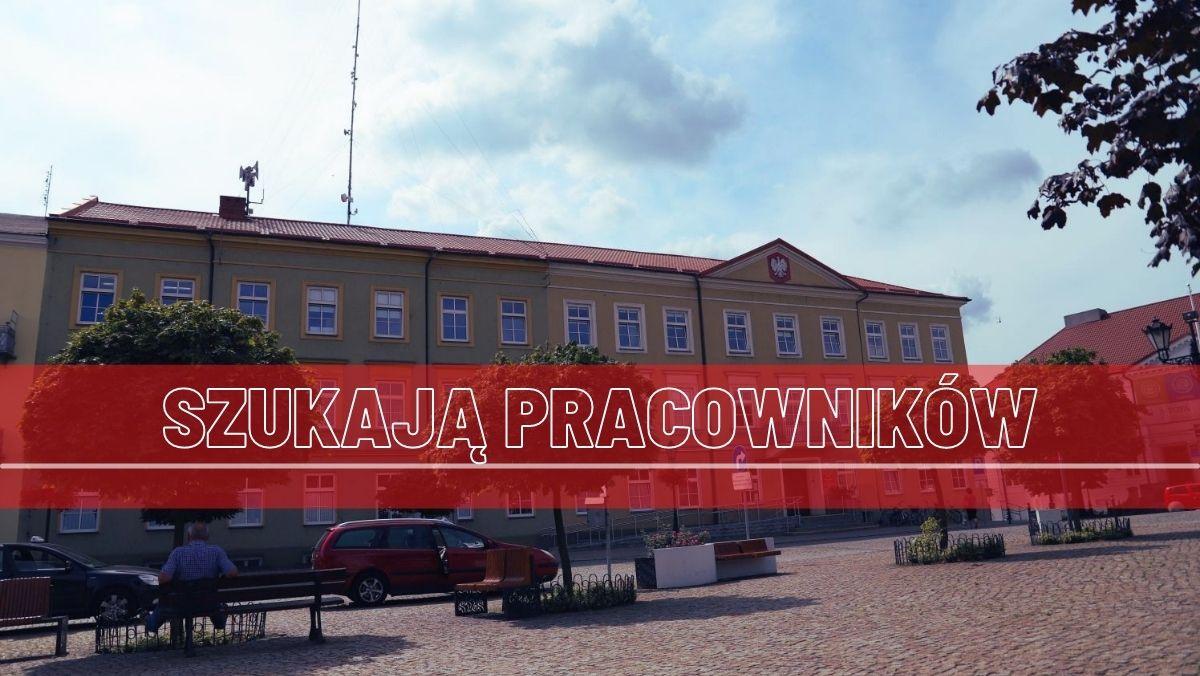 Jest praca! Urząd Miasta w Kutnie szuka ponad 10 chętnych osób - Zdjęcie główne