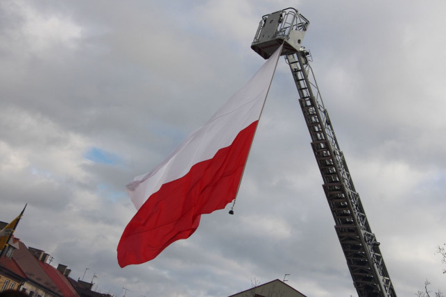 Konkursy, pokazy i kino plenerowe… Szykuje się wielkie wojskowe święto w powiecie kutnowskim - Zdjęcie główne