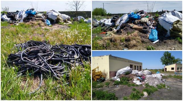 [ZDJĘCIA] Nielegalne wysypisko śmieci w Kutnie? Urząd i policja znają problem - Zdjęcie główne
