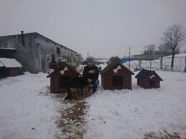 Radny z Kutna pomaga bezpańskim zwierzakom. Zorganizował internetową zbiórkę - Zdjęcie główne