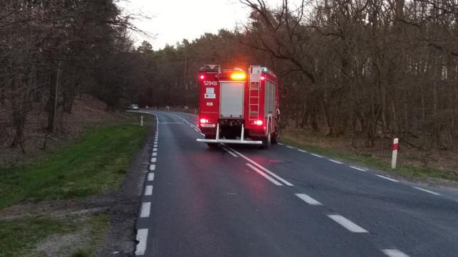 Wypadek na leśnej drodze. Mężczyzna z zakazem prowadzenia pojazdów w szpitalu - Zdjęcie główne