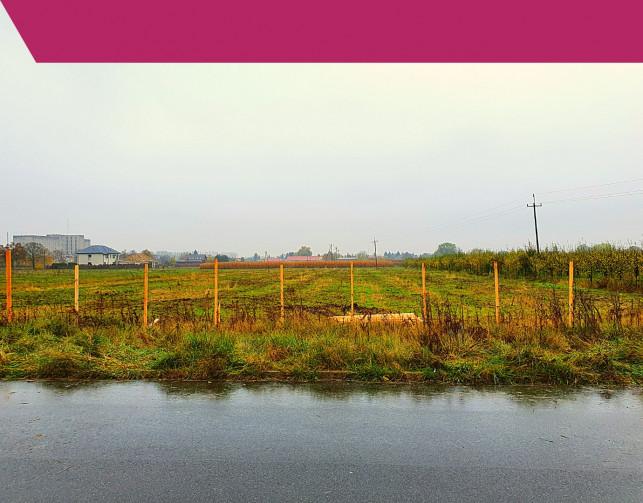 [FOTO] Wreszcie! Rozpoczyna się budowa Leroy Merlin w Kutnie - Zdjęcie główne
