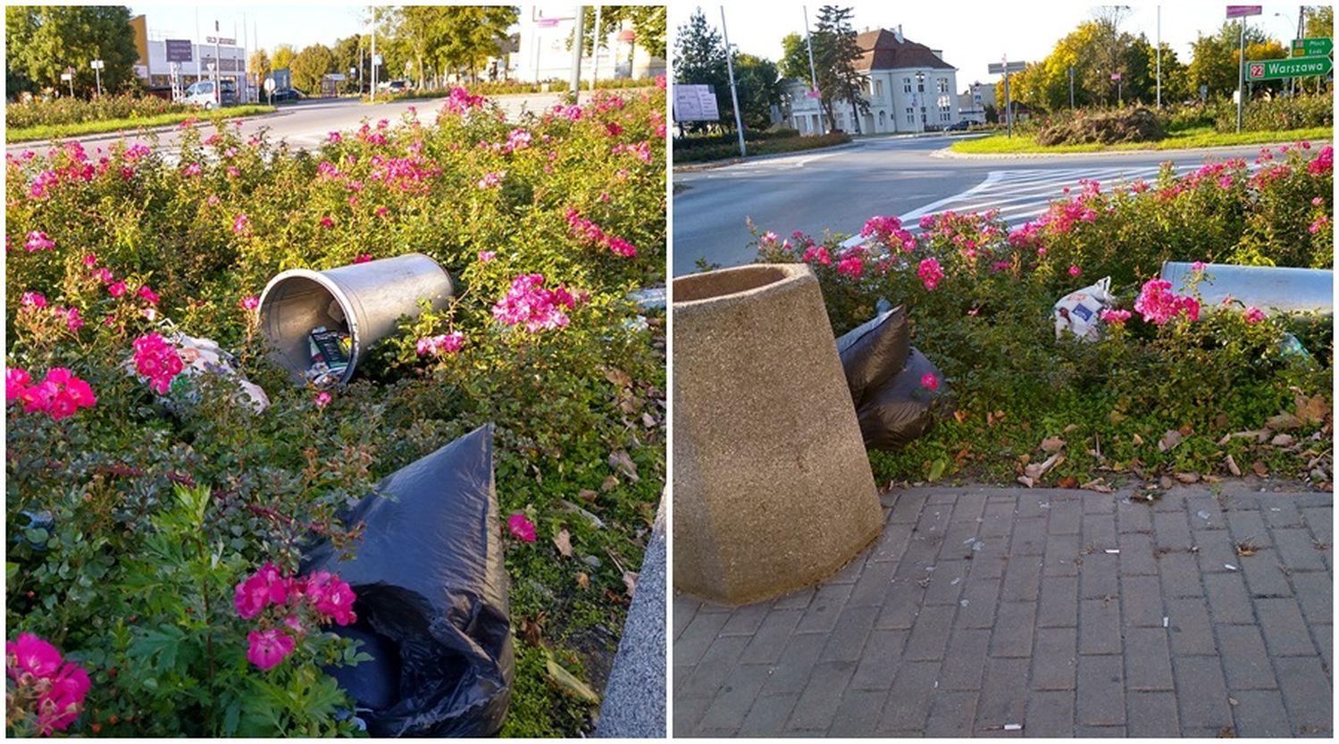 Śmietnik w różach, czyli tak wyglądało centrum Kutna w weekend [ZDJĘCIA] - Zdjęcie główne