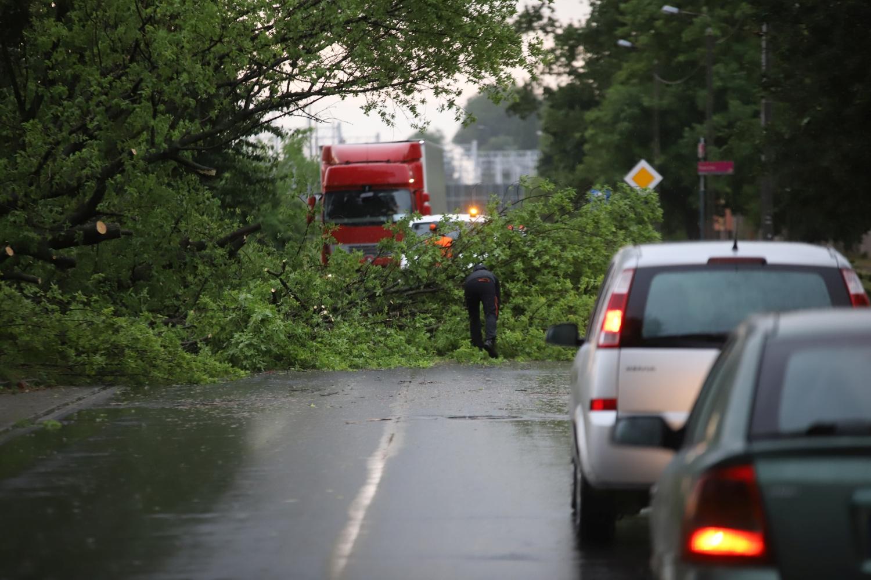 Szykuje się kolejny burzowy dzień. Jest nowe ostrzeżenie dla Kutna i okolic - Zdjęcie główne