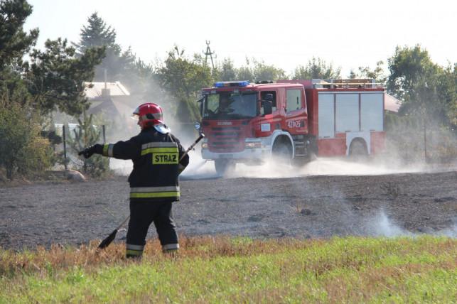 Setki pożarów w naszym powiecie, w akcji ponad 130 zastępów! Strażacy apelują do mieszkańców o... - Zdjęcie główne