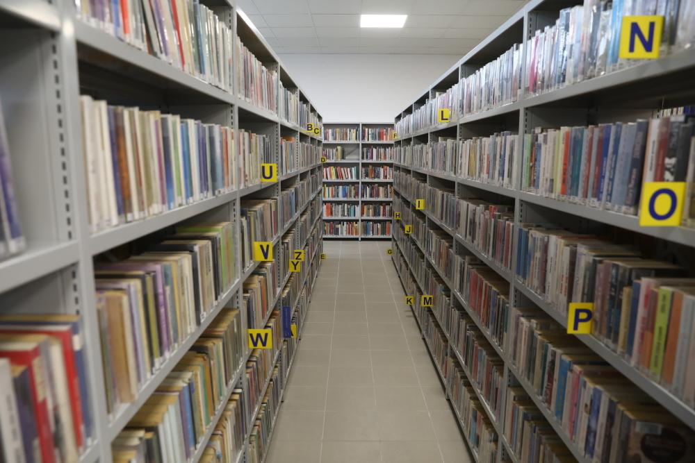 Czarnek zdecydował: jest nowa lista lektur. Jakie książki uczniowie będą czytać od września? - Zdjęcie główne