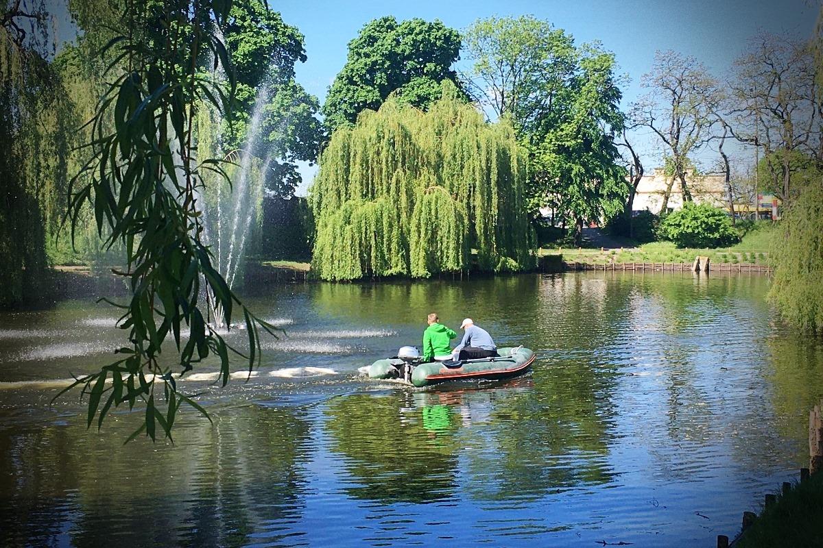 [FOTO] Pontonem przez staw w parku Traugutta. Teraz woda będzie dużo czystsza! - Zdjęcie główne