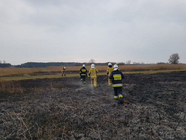 [FOTO] Pożar pod Kutnem. W akcji dwa zastępy OSP - Zdjęcie główne