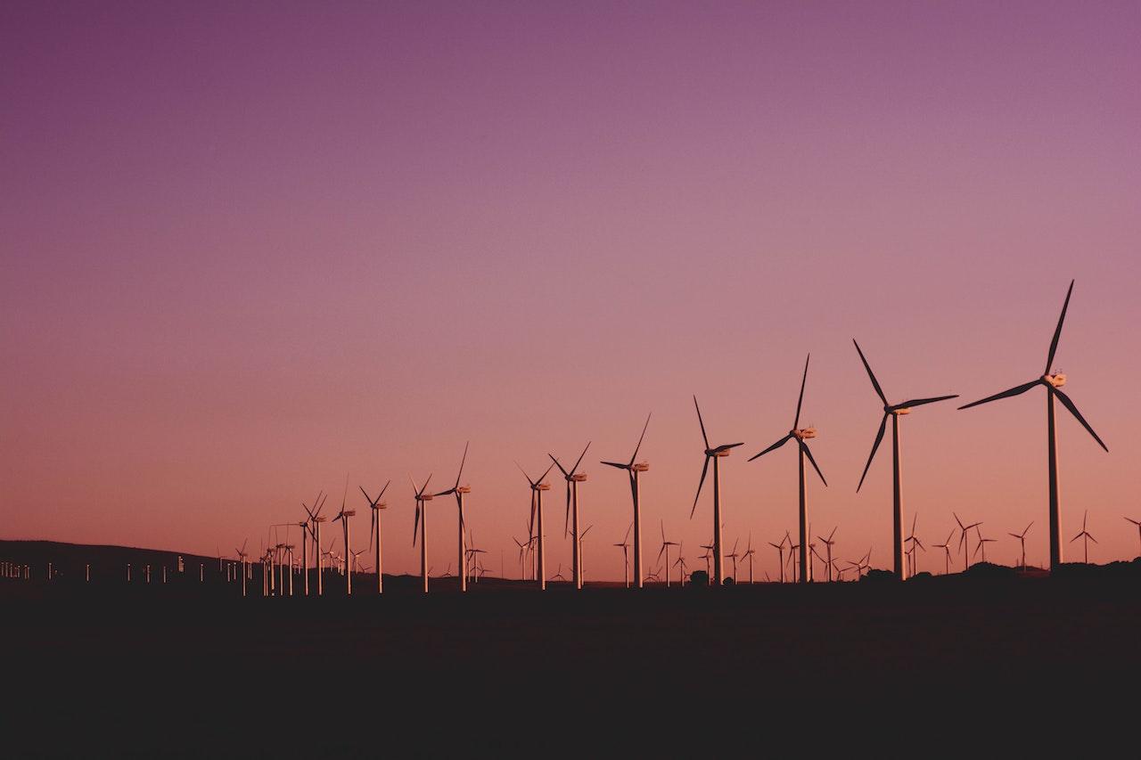 Zielona energia – gdzie ją wykorzystać? - Zdjęcie główne