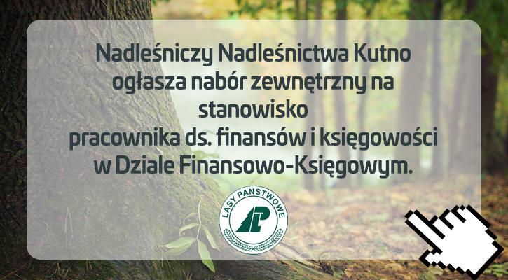 Nadleśnictwo w Kutnie szuka pracownika - Zdjęcie główne