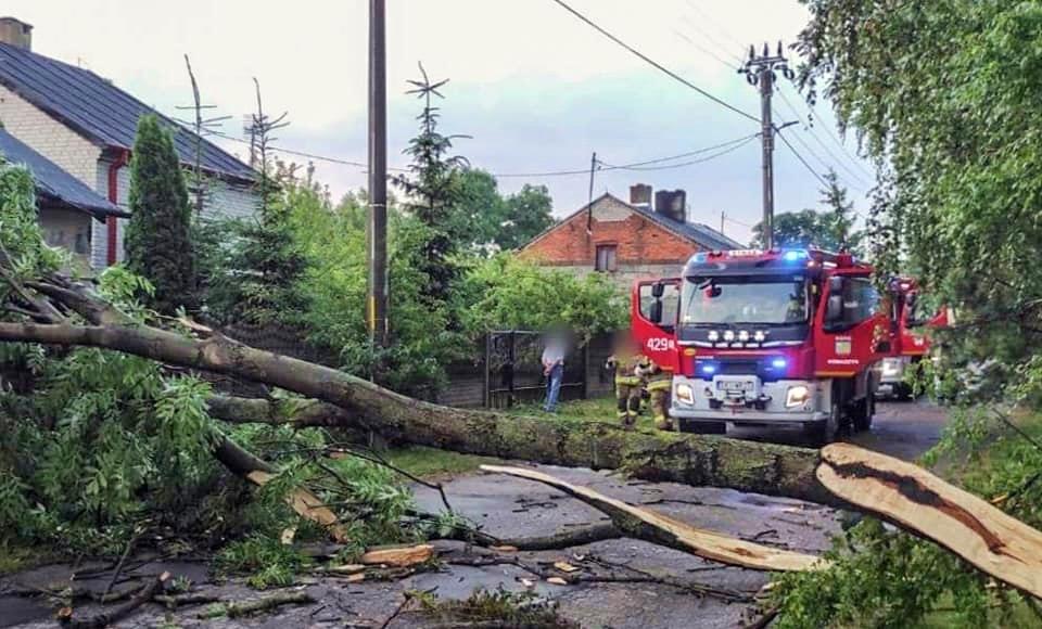 W powiecie kutnowskim możliwe silne burze. Wydali kolejne ostrzeżenie - Zdjęcie główne