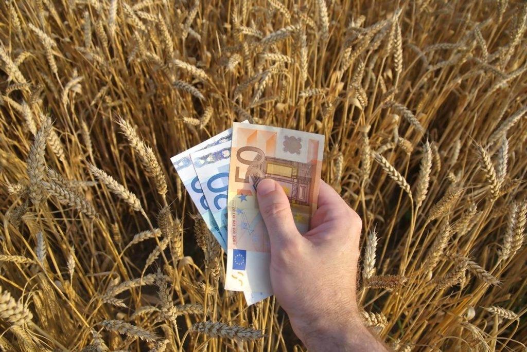 Rolnicy dostaną kasę na działalność... pozarolniczą. Trwa nabór wniosków - Zdjęcie główne