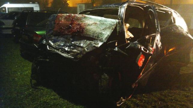 [WIDEO] Tragiczny wypadek w Pleckiej Dąbrowie. Nie żyją 3 osoby! - Zdjęcie główne