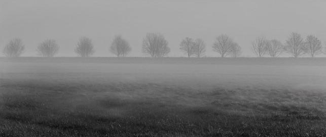Uwaga ! Dziś silna mgła - Zdjęcie główne